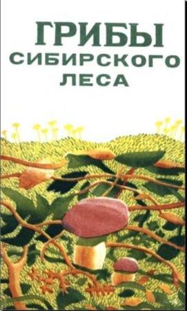 Грибы сибирского леса (1986)