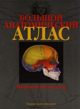 Йоганес Роен, С. Йокочи, Э. Лютьен-Дреколл - Большой анатомический атлас (2015)