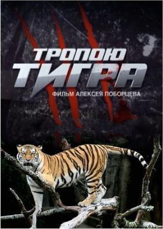 Тропою тигра   (2015) SATRip