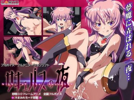 Night of the Succubus (2015/PC/JP)