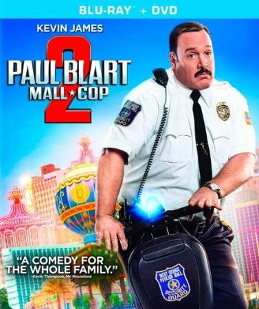 Толстяк против всех  / Paul Blart: Mall Cop 2  (2015) BDRip