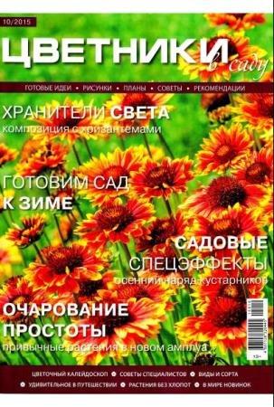 Цветники в саду №10 (октябрь /  2015)