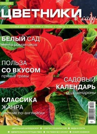 Цветники в саду №1 (январь /  2016)