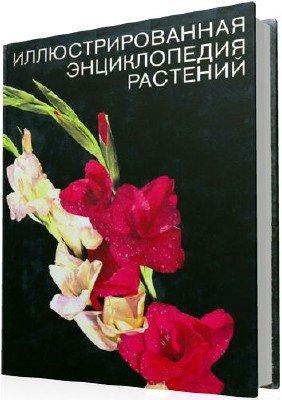 Иллюстрированная энциклопедия растений (2-е издание)