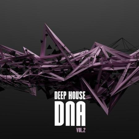 VA - Deep House DNA, Vol. 2 (2016)