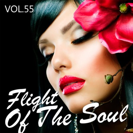 Flight Of The Soul Vol.55 (2016)