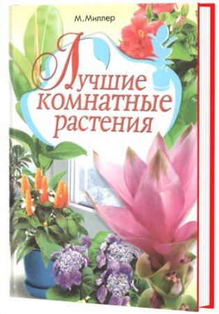 Моисей Миллер - Лучшие комнатные растения