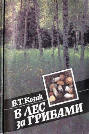 Козак В.Т. - В лес за грибами