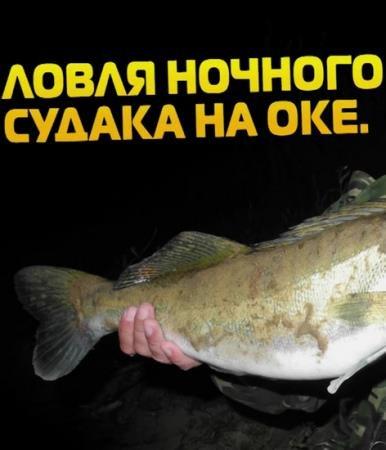 Ловля ночного судака на Оке   (2015) WebRip