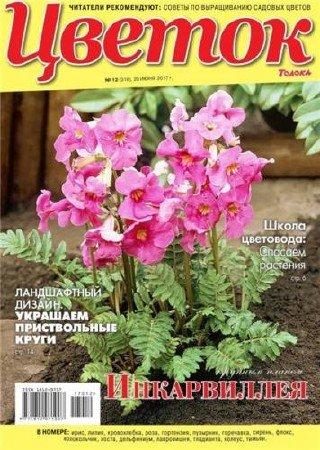 Цветок №12 (июнь 2017)