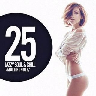 25 Jazzy Soul and Chill Multibundle (2016)