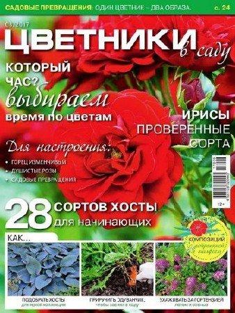 Цветники в саду №8 (август 2017)