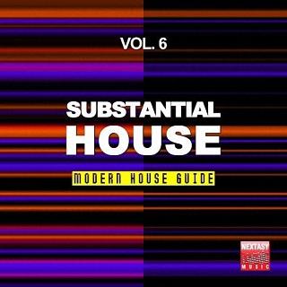 Substantial House Vol 6 Modern House Guid (2016)