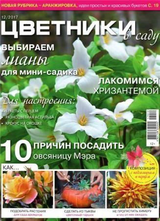 Цветники в саду №12 (декабрь 2017)
