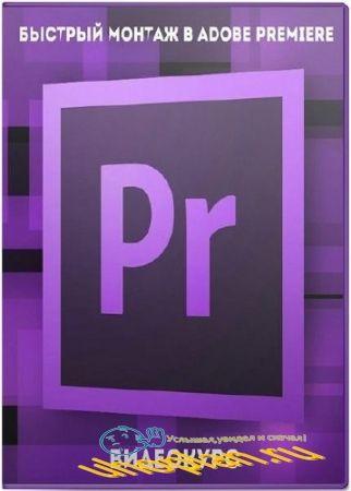 Быстрый монтаж в Adobe Premiere. Видеокурс (2017)