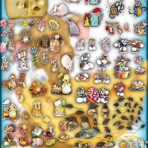 Png Клип-арты - Серые и белые мыши