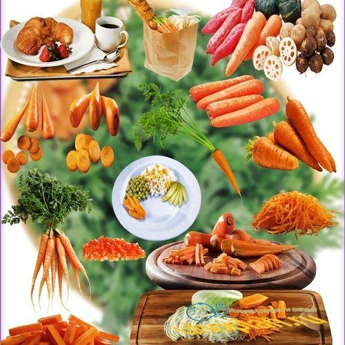 Растровые клип-арты - Красная морковь