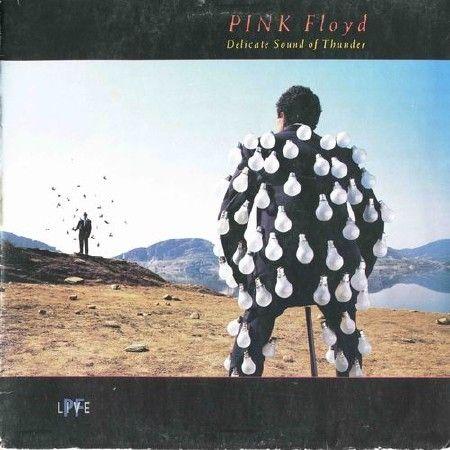 Pink Floyd - Delicate Sound Of Thunder [Vinyl-Rip 24-bit] (1988) FLAC