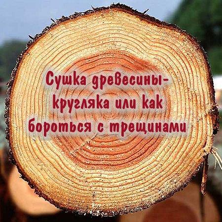 Сушка древесины-кругляка или как бороться с трещинами (2016) WEBRip