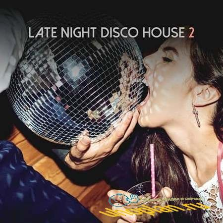 Late Night Disco House Vol.2 (2018)