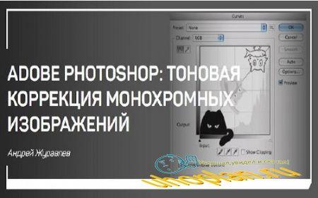 Adobe Photoshop: тоновая коррекция монохромных изображений. Мастер-класс (2018)