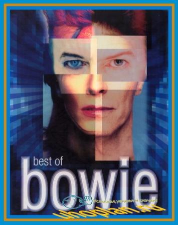 David Bowie - Best of Bowie (2002) DVDRip